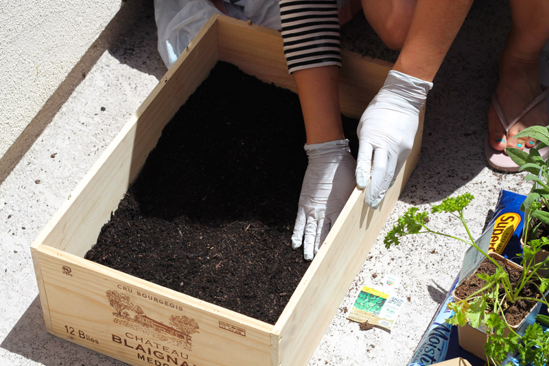 wine crate herb pour soil
